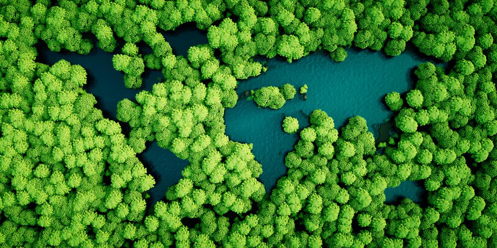 Conheça os cinco países mais sustentáveis do mundo