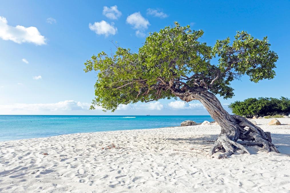 Aruba – A Ilha da Felicidade