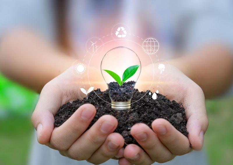 Como adicionar sustentabilidade à proposta de incentivo da sua empresa